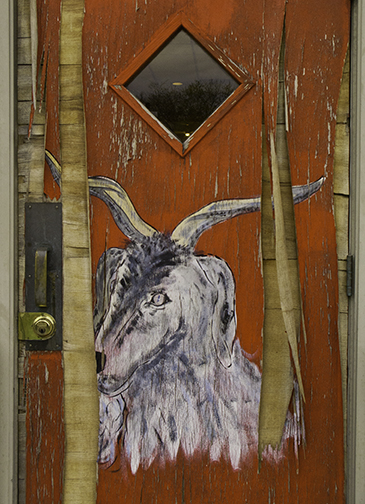 Billy Goat Door 1© David Moenkhaus